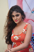 sony charista latest sizzling pics-thumbnail-17
