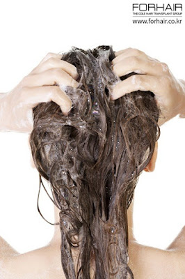 hair loss myths, hair loss fact, hair loss fiction, fact or fiction, forhair korea