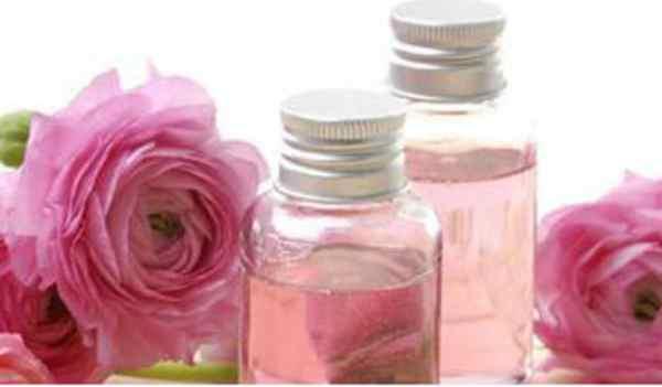Tanaman Herbal Penghilang Bekas Luka