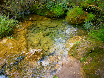 El nacimiento del río Cuervo. Autor: Miguel Alejandro Castillo Moya