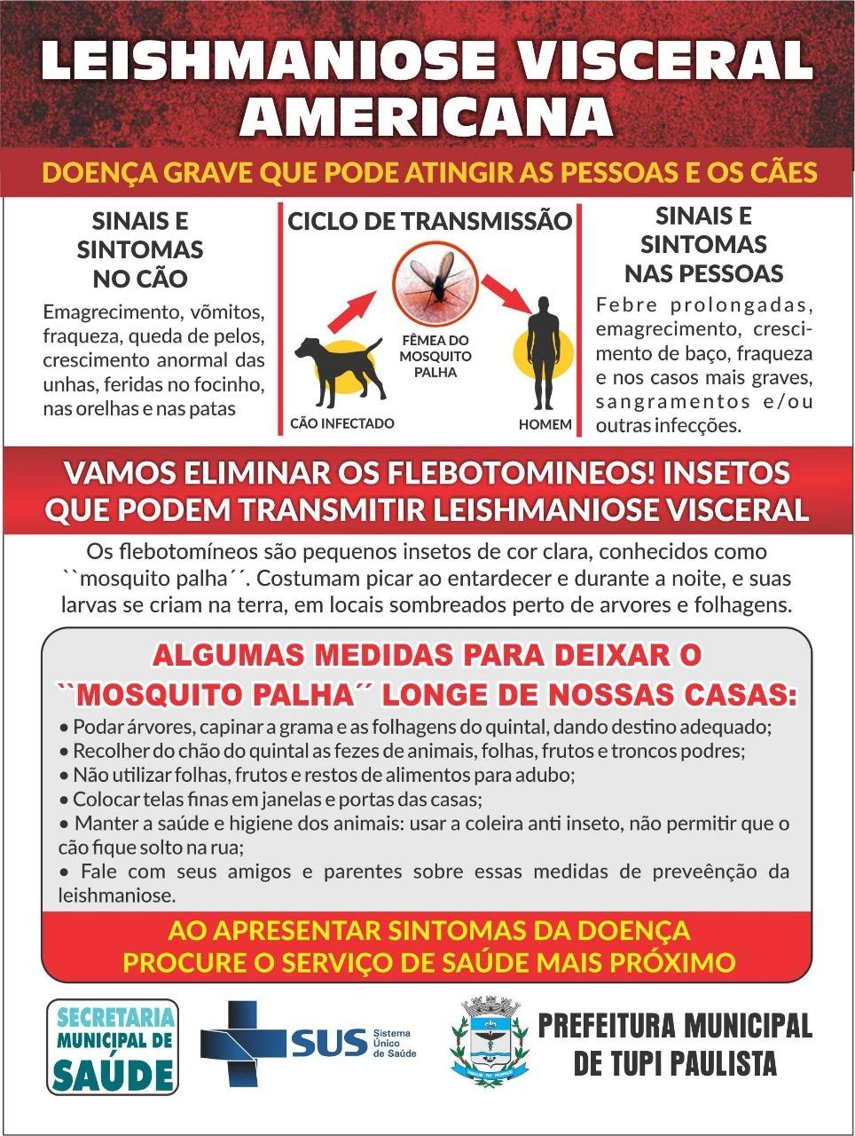 leishmaniose visceral sintomas transmissão e prevenção