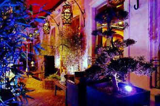 Nos Adresses : La terrasse d'hiver du Buddha Bar Hotel Paris, Forêt Enchantée sur le thème de la bambouseraie japonaise   - Paris 8