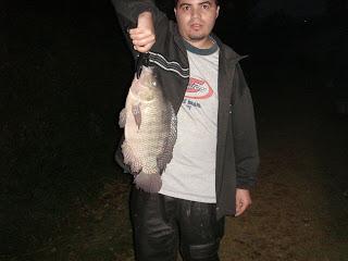 Dica na Pesca, Pesca Noturna, Material Nó de Pesca,