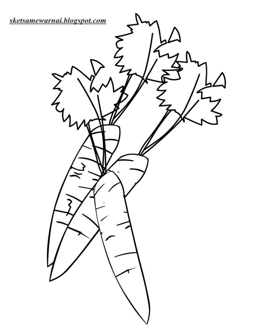 Daftar Gambar Tumbuhan Mewarnai