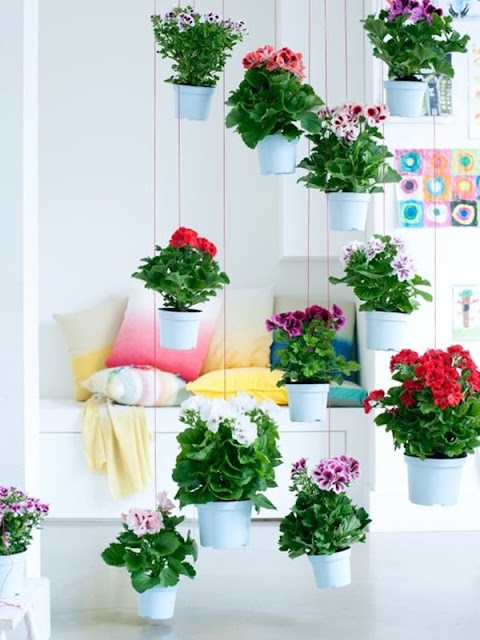 Ideas To Decorate Interiors With Plants 2