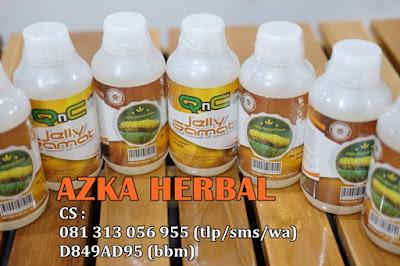 Pengobatan Herbal Asam Lambung