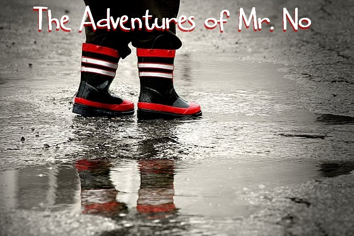The Adventures of Mr. No