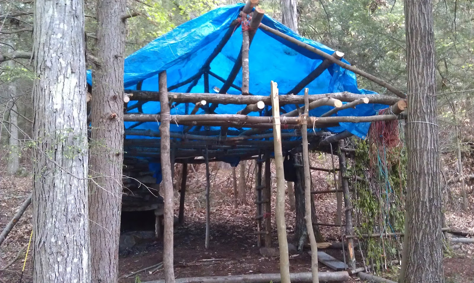 Long Term Survival Shelter First Day Of Construction
