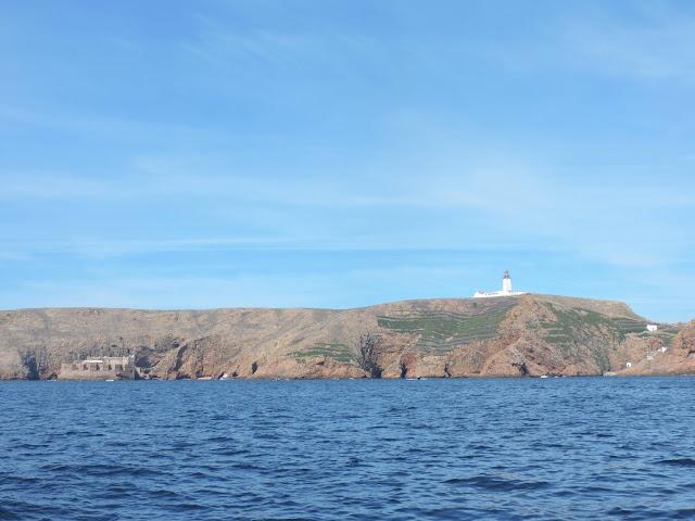 Visiting Berlenga Island