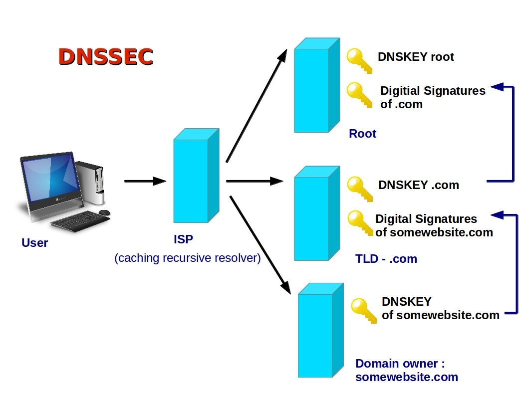 Domain name system and server