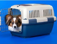 Dog Crate Training Tips And Advice