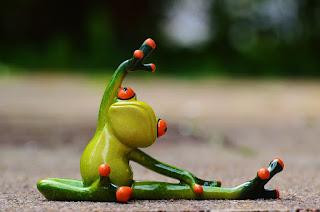yoga yapan kurbaga, spor yapan hayvan, kurbaga