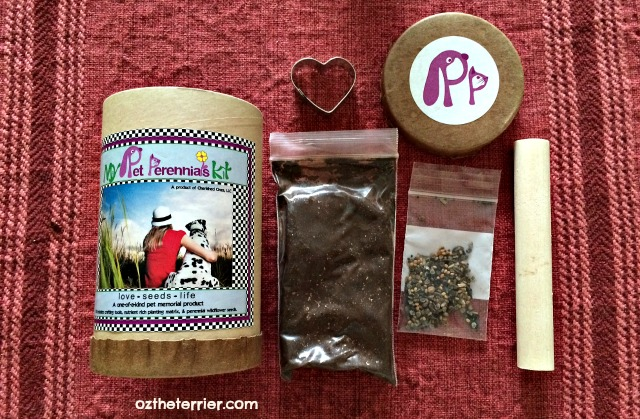 Pet Perennials Pet Memorial crafting kit