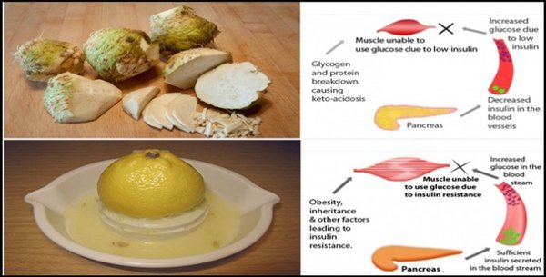 LemonCelery