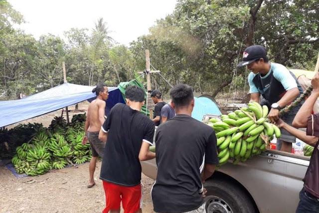 Mengharukan, Korban Gempa Lombok Jual Hasil Bumi untuk Bantu Warga Palu