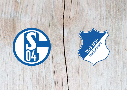 Schalke vs Hoffenheim - Highlights 20 April 2019