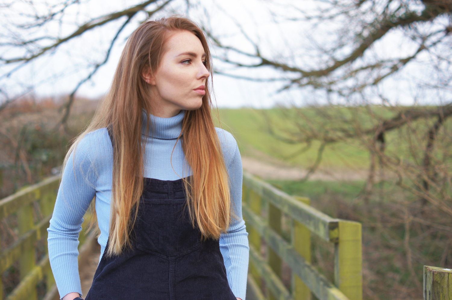 blue roll neck and dungaree dress