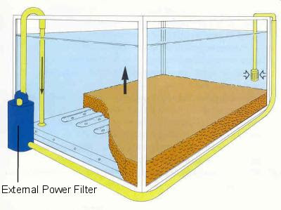 aqua one filter: Types of Aquarium Filters