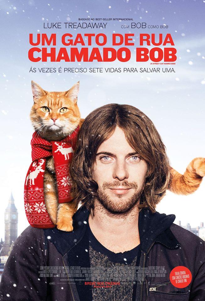 Resultado de imagem para filme gato bob