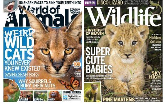 ANIMAL RELATED  - World Of Animals – Issue 38 2016  - BBC Wildlife – October 2016