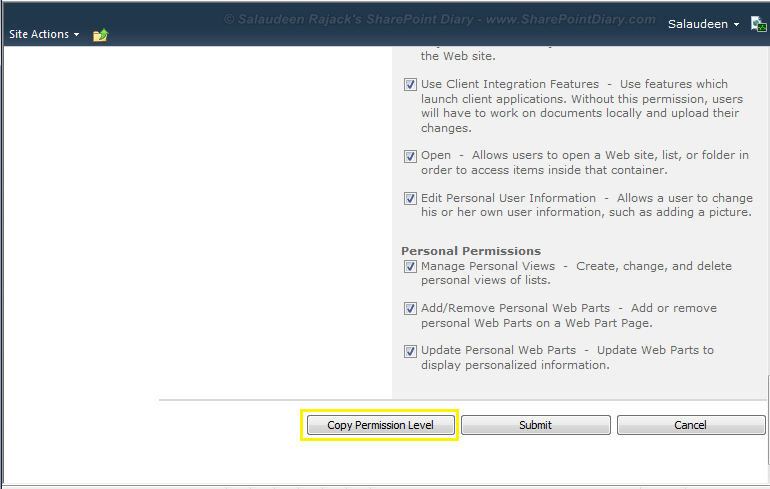 sharepoint 2010 copy permission level