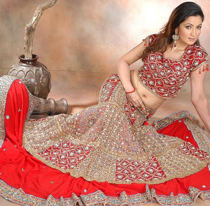 Beautiful Pakistani Bridal Dresses: Indian-Pakistani Beautiful Bridal-Brides-Wedding Dresses
