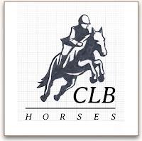 CLB Horses sketch