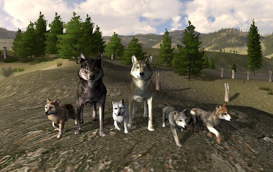 Wolf Quest Free Online