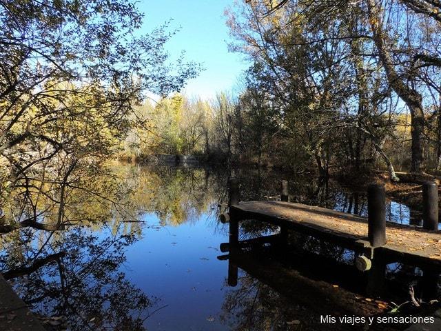Bosque de Finlandia, Racafría