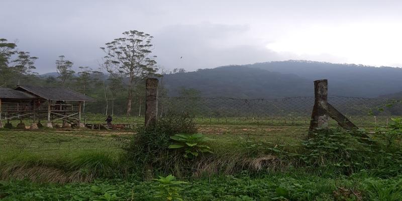 Wisata Alam Kampung Cai Ranca Upas Ciwidey Bandung