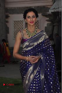 Model Shilpa Reddy Stills in Purple Silk Saree at Gudi Sambaralu 2017 Sri Ramachandra Swami Temple  0030.JPG
