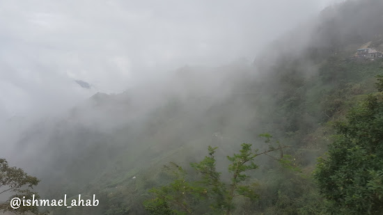 Fogs on Benguet's Mountain