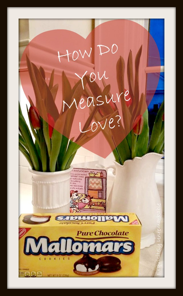 Mallowmars and tulips How Do You Measure Love text