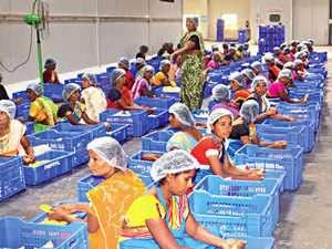 New scheme to help unorganised food processing sector : Gram Samridhi Yojana