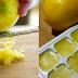 Use Frozen Lemons and Say Goodbye to Diabetes, Tumors, Obesity!