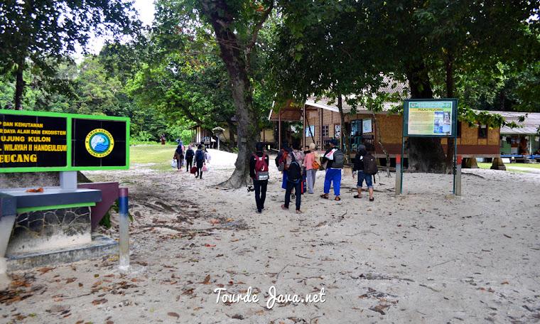 trekking alam liar di pulau peucang ujung kulon