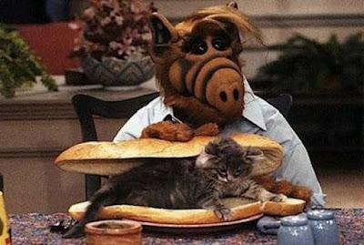 Tranquila, juventud: nunca se vio a ALF comiéndose un gato en la tele. Eran los '80, no el s. XVII, caray.