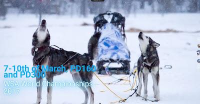 www.polardistans.se