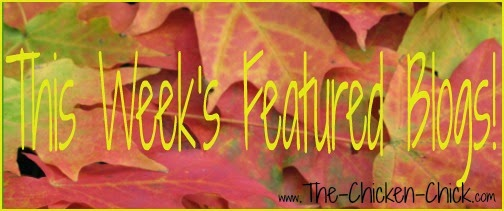This week's featured blogs at The Clever Chicks Blog Hop