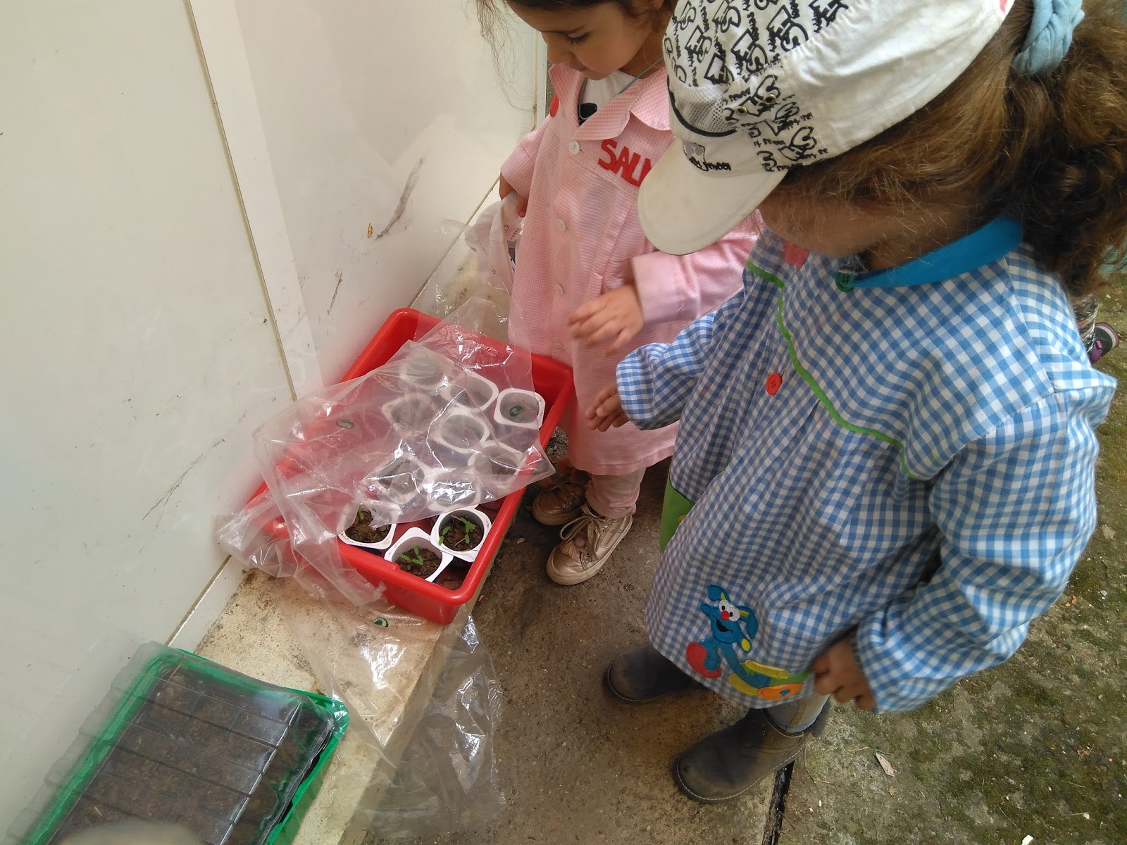 Raquel infantil poes as con fresas for Mural nuestra carne