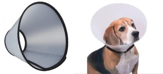 köpek-yara-bakımı