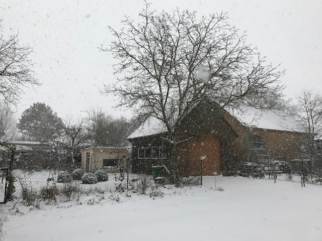 Schneefall im Landgarten (c) by Joachim Wenk