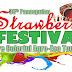 Strawberry Festival 2016