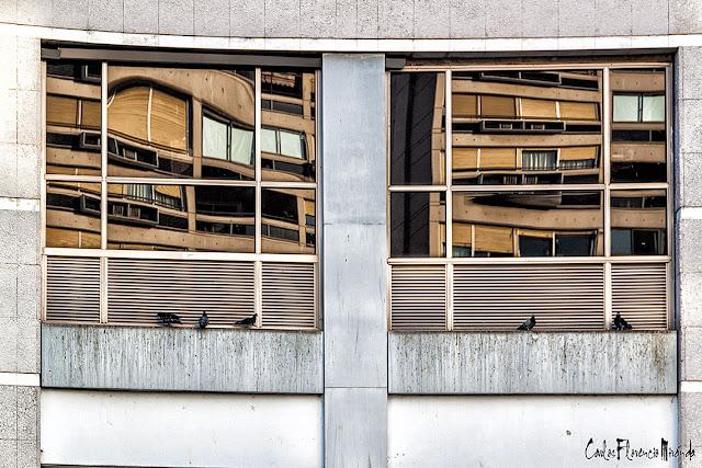 Ventanal de frente  imagen dividida en dos con 3 palomas en uno y dos en otro lado.