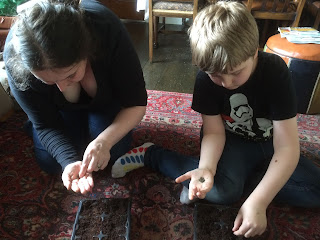 Mummy and Son, sowing salads