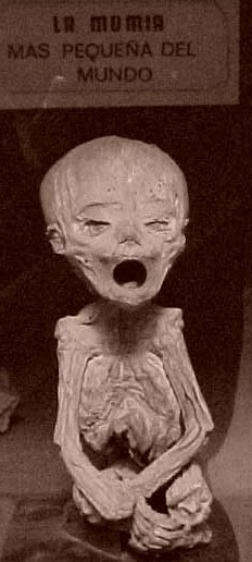 Foto a la momia de Guanajuato más chiquita