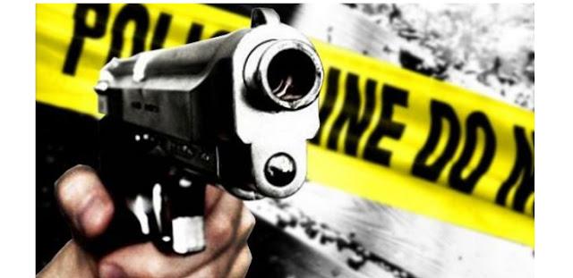 Hantam Polisi dengan Balok Kayu, Pencuri Motor Ditembak Mati