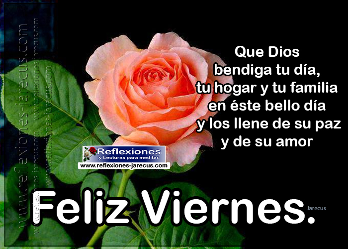 Feliz viernes. Que Dios bendiga tu día, tu hogar y tu familia en éste bello día y los llene de su paz y de su amor.