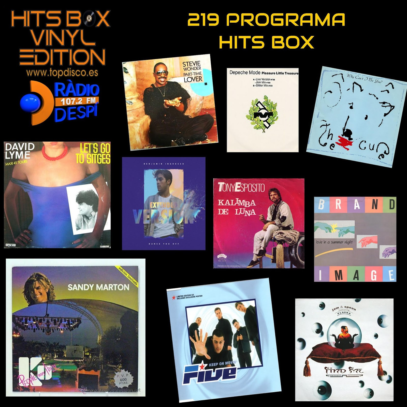 219 Programa Hits Box Vinyl Edition