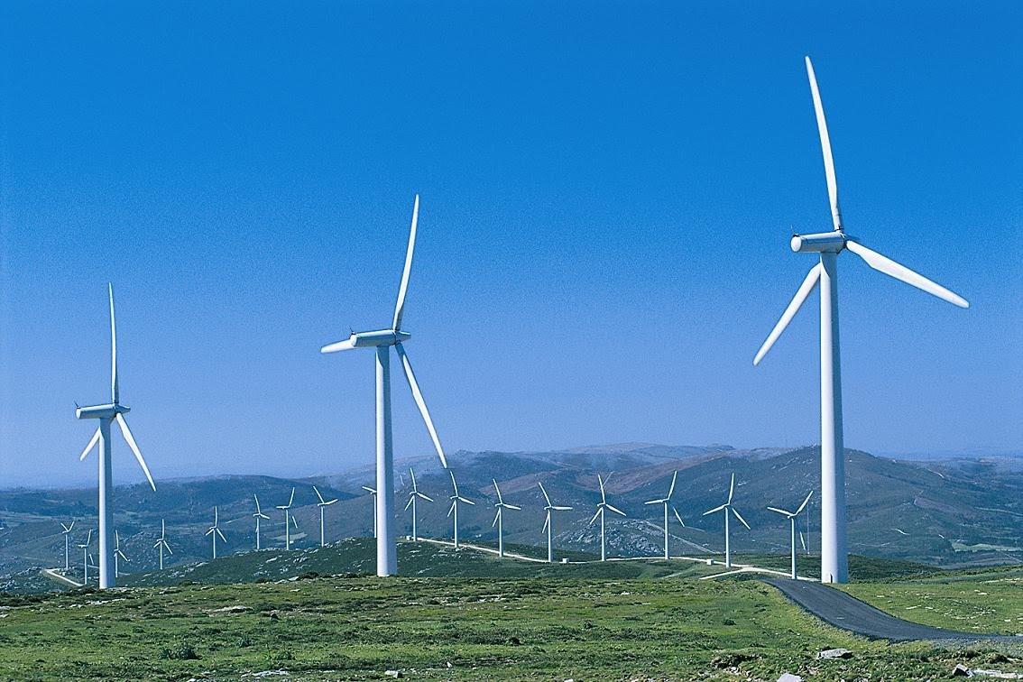 Resultado de imagem para recursos renováveis